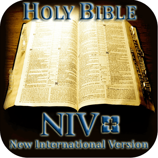 Best NIV Study Bible – Or Second Best NIV Study Bible