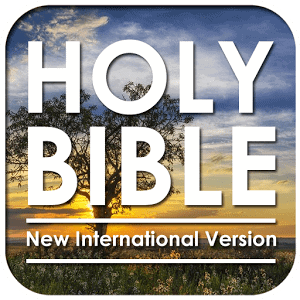There are numerous negative reviews against the NIV Bible (New International Version Bible).  I do not agree.  I really enjoy this version of the Bible.  A dear friend of my son introduced him to be the best NIV study bible.