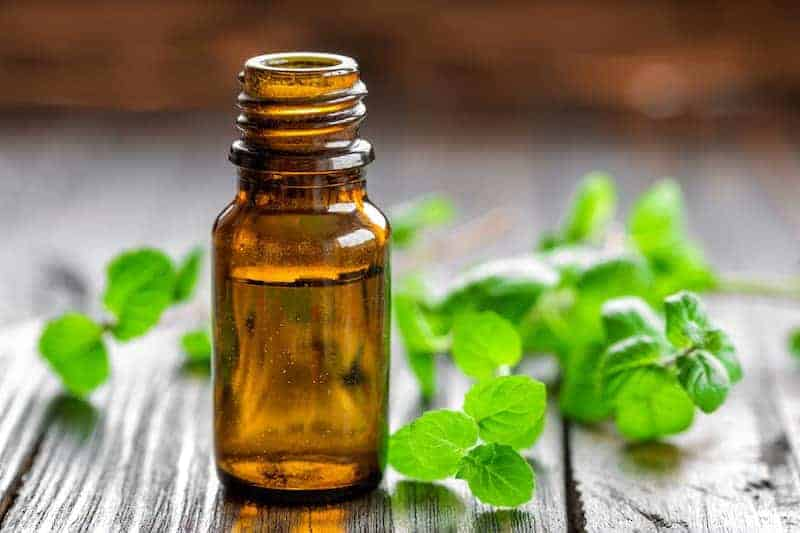 Essential Oil Blend Recipes | Toothpaste-Mouthwash – Wound Healer