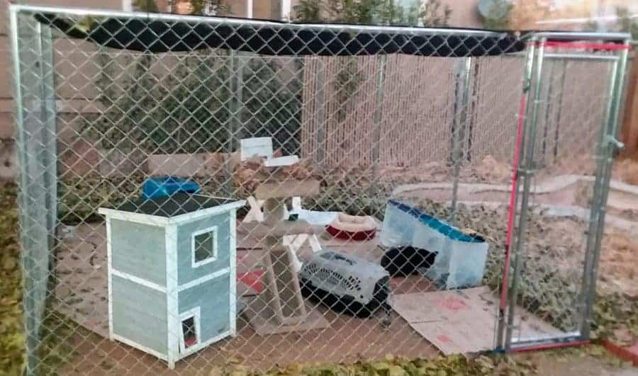Dog Kennel for Cat - My son purchased the 2 in 1 chain link 10' x 10' x 6' dog kennel by Fencemaster from PetSmart.
