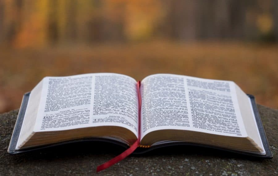 In the Presence of Jesus Christ- True Servant Helper