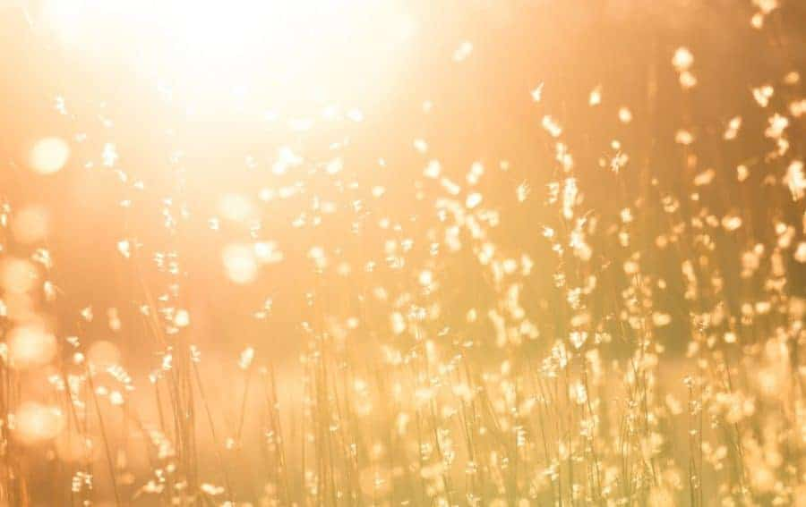 What is healing light? - Increasing light doesn't just happen.  Light must be added upon and the way to increase light is to develop an insatiable curiosity for truth.